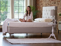 The 'Pamper' 8 inch Talalay Latex Mattress by Pure LatexBLISS